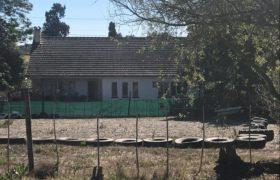 Farm for Sale in Botfontein Smallholdings